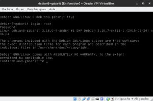 Debian 8 - Connexion dans la fenêtre VirtualBox