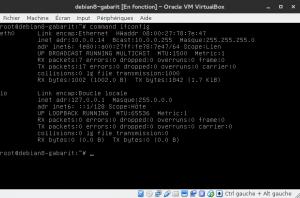 Debian 8 - ifconfig